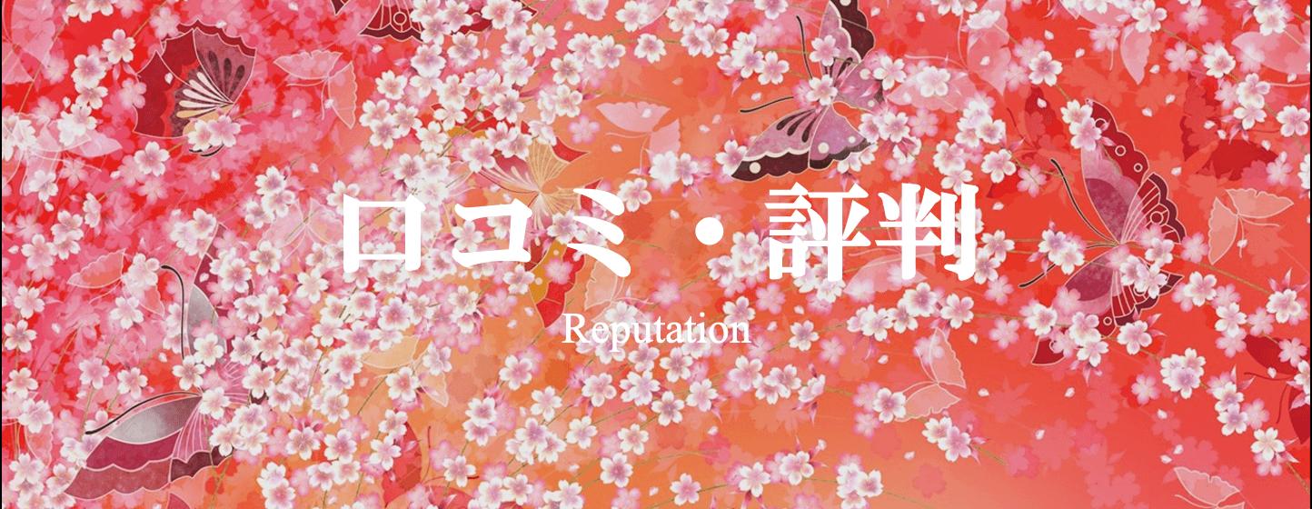TUZUMI ~ japanese 和 styleの口コミ評判